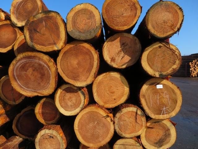 wood-img10